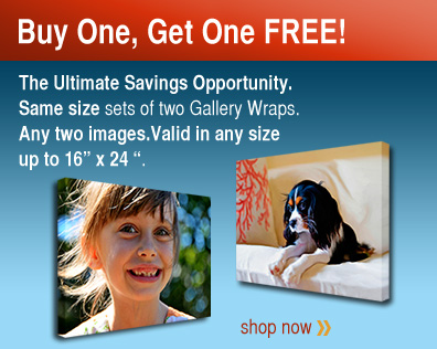 Buy 1 Canvas Photo Get One Free! (Same Size Only)